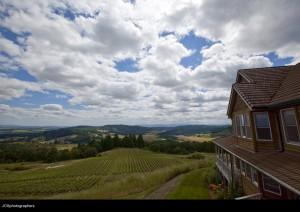 Oergon Wine Country 1