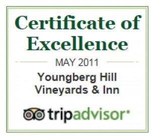 TripAdvisor Award of Excellence 1