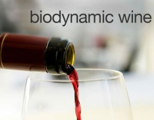 Biodynamic Farming: A GREENER approach for your wine 1
