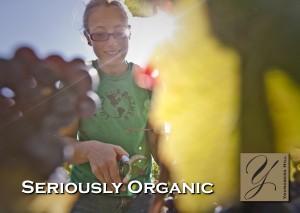 Healthy dirt, happy winemaker! 1