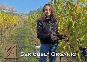 A New Generation of Winemaking: A Daughter's Tale 1