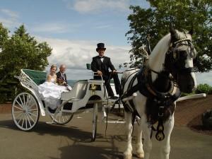 Willamette Valley Destination Wedding