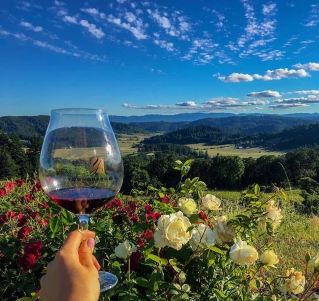person holding up wine glass at youngberg hill