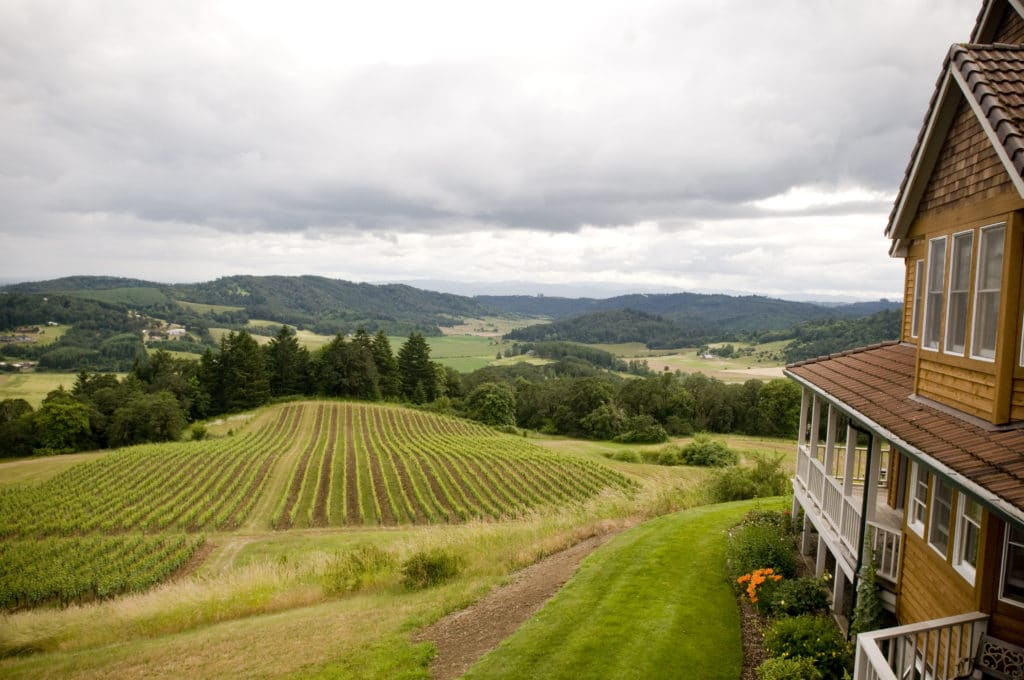 Our Willamette Valley Bed and Breakfast offers awe-inspiring views.