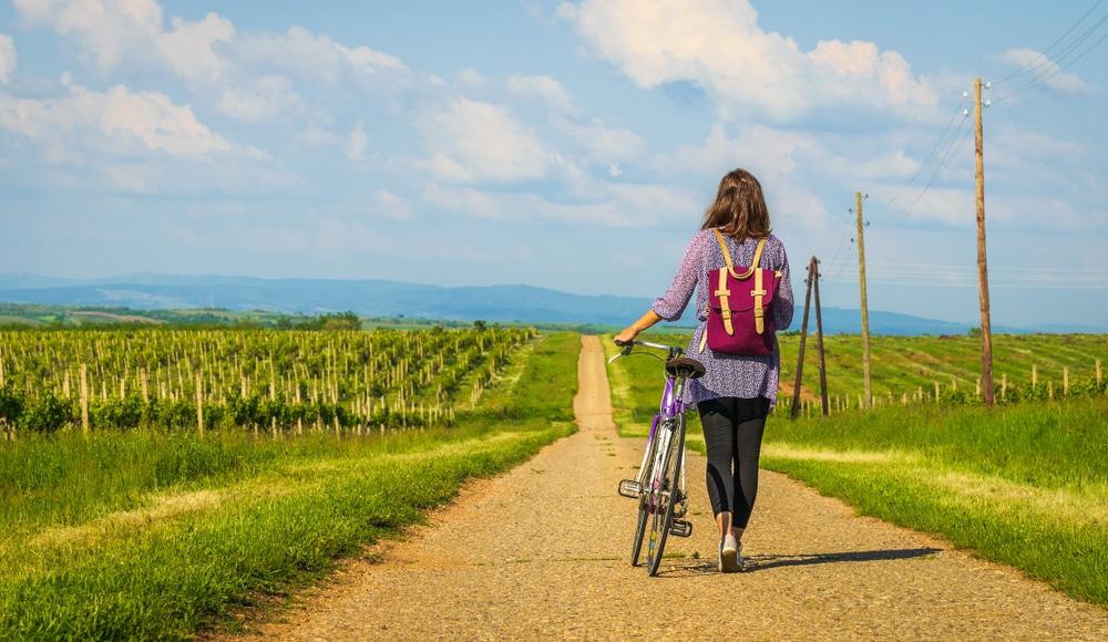 biking routes in willamette valley